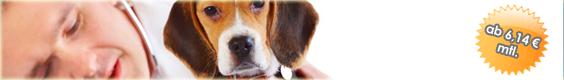 Hundekrankenversicherung Katzenkrankenversicherung